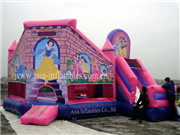5 In 1 Princess Palace Castles Inflatable Combo Moonwalk