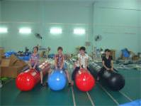 4m Long Pony Hops Inflatables Race Games