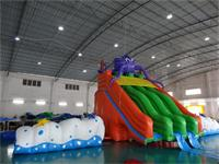 Inflatable Sea Snail Slide Water Parks
