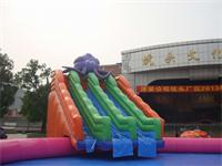 Giant Inflatable Octopus Water Slide on Sale