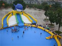 Giant Dual Lane Inflatable Dolphin Slide Water Park