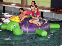 Aqua Run Pool Inflatable Sea Turtle Obstacle Course Water Games