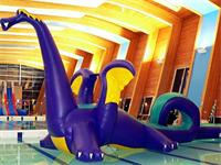 High Density Aqua Runs Loopy Dragon Obstacle Course for Sale