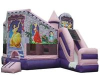 Inflatable Princess Bounce Castle Combo