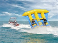 High Quality CE Approval Inflatable Flying Fish Boat for Sale